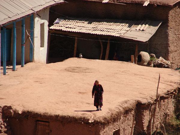 Женщина на крыше дома [Долгий В.]