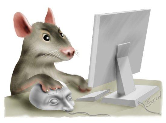 Скачать Игру На Компьютер Крысы - фото 2
